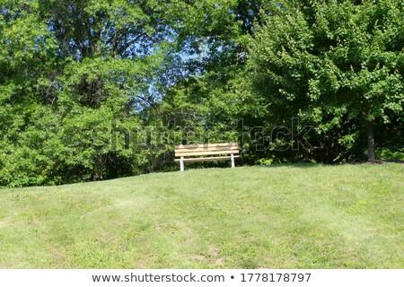 hilltop empty seat stock photo © bdspn