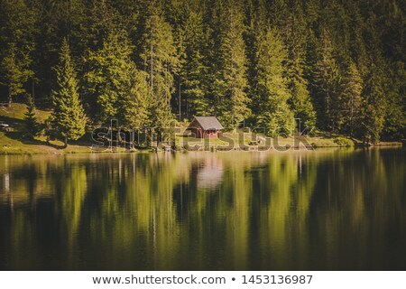 мало кабины лесу дома лес Сток-фото © diabluses