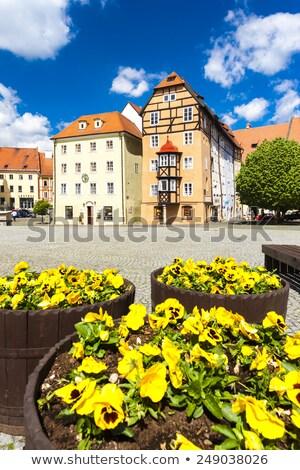 Complejo medieval casas República Checa casa edificio Foto stock © phbcz