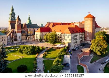 Katedrális Krakkó bazilika Lengyelország égbolt templom Stock fotó © joyr