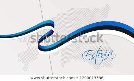 Mapa república Estonia punto patrón vector Foto stock © Istanbul2009