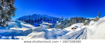 hó · hegy · völgy · tél · tájkép · fülke - stock fotó © Kotenko