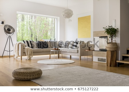 spacious living room with a big carpet stock photo © jrstock