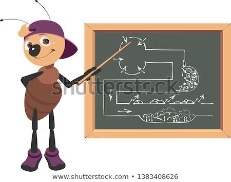 Hangya tanár iskolatábla izolált fehér osztályterem Stock fotó © orensila