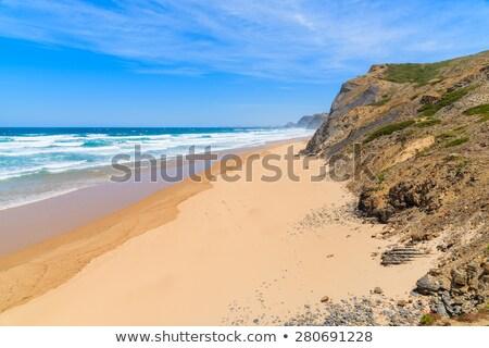 Praia Portugal vara grama mar Foto stock © homydesign