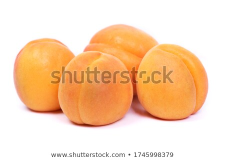 Quatro laranja árvore verde comida fruto Foto stock © funix