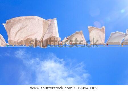 wasserij · wasknijper · vrouw · gelukkig · home · jonge - stockfoto © zurijeta