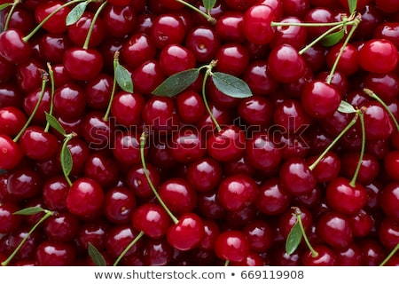 Stock photo: Fresh red organic Cherry, cherries