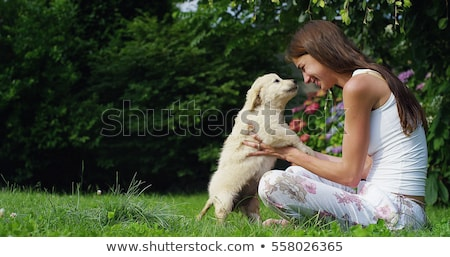 puppy  loving his young beautiful owner Stock photo © Giulio_Fornasar