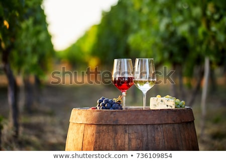 Glasses with red and white wine on the wooden background Stock photo © Alex9500