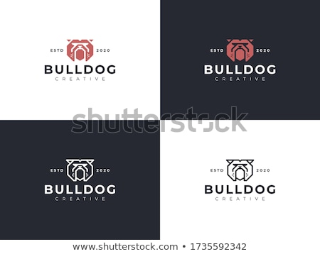 bulldog · logo-ontwerp · 10 · kunst · teken · tanden - stockfoto © sdcrea
