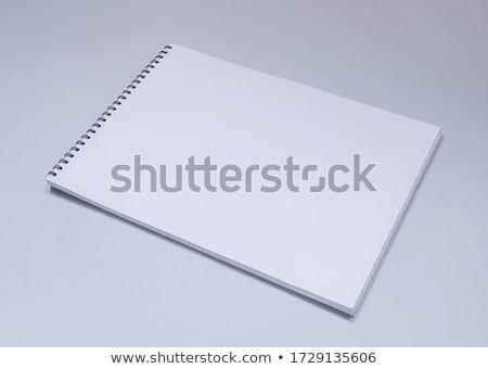 Rajz könyv vázlat nyitva kézzel rajzolt projektek Stock fotó © -Baks-