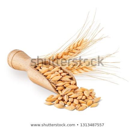 Gerst graan voedsel hout tarwe maaltijd Stockfoto © M-studio