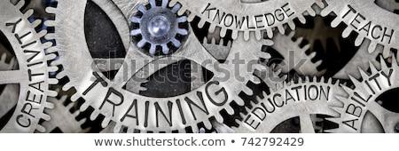 Treinamento desenvolvimento texto mecanismo metal roda dentada Foto stock © tashatuvango