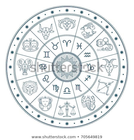 Zodyak burç astroloji imzalamak sürahi ikon Stok fotoğraf © Krisdog