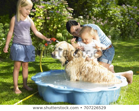 mother daughter and son washing the dog stock photo © is2
