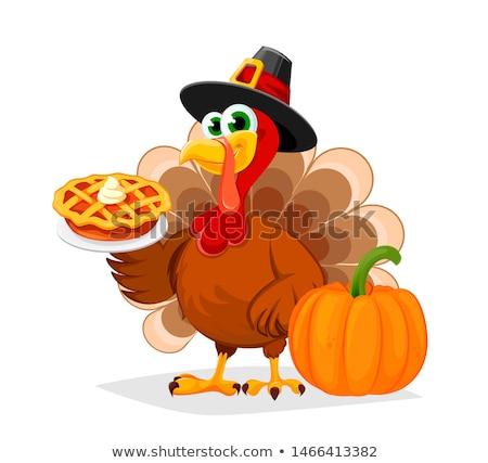 grappig · Turkije · ogen · plaats · tekst - stockfoto © hittoon