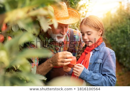 Grootvader kleindochter man vrouwelijke ondersteuning zorg Stockfoto © IS2