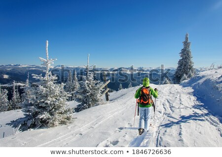 Girls on skis trekking through the snow Stock photo © IS2