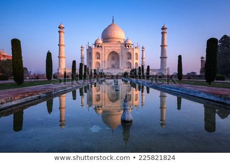 Taj · Mahal · vector · mooie · hemel · abstract · reizen - stockfoto © rogistok