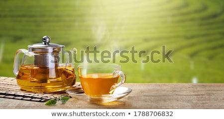Tazas de té tetera superior vista hoja fondo Foto stock © karandaev