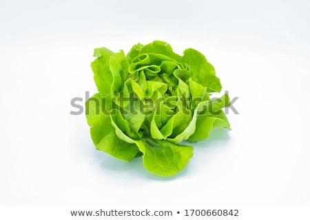 saláta · keret · friss · ropogós · zöld · piros - stock fotó © galitskaya