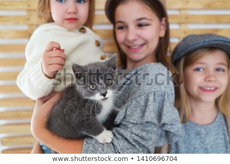 Fashion cute little girls sisters with a British kitten in the a Stock photo © dashapetrenko