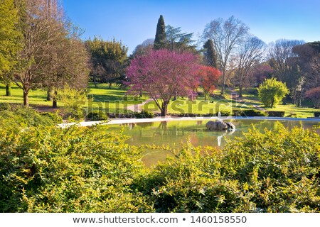 Fountain Rotonda di Borghese green park in Rome scenic view Stock photo © xbrchx