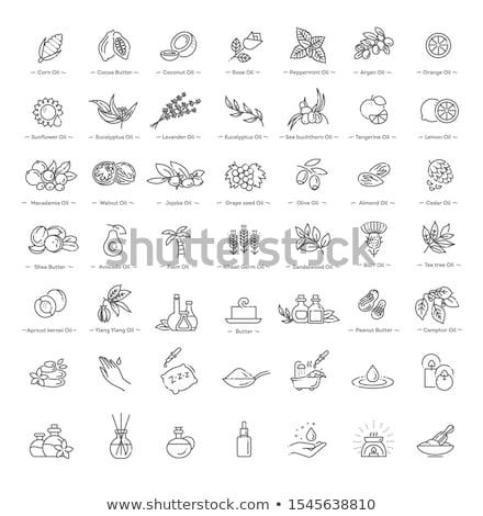 Kozmetikai hozzávaló virág vektor vékony vonal ikon Stock fotó © pikepicture