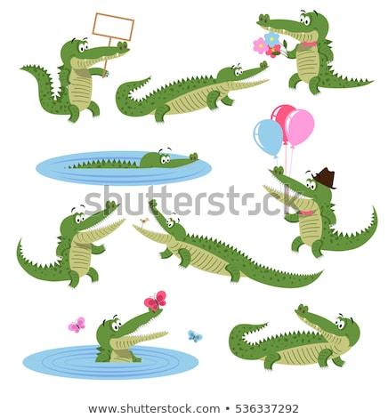 bonitinho · crocodilo · desenho · animado · vetor · adesivo · ícone - foto stock © robuart