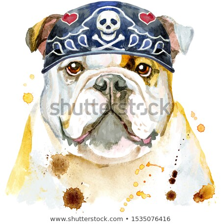 Watercolor portrait of bulldog wearing biker bandana Stock photo © Natalia_1947