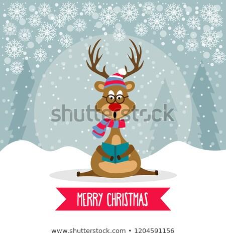 красивой дизайна северный олень пения Рождества Сток-фото © balasoiu