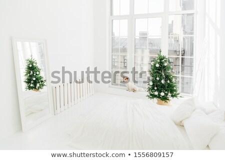 Nieuwjaar interieur ruim witte slaapkamer bed Stockfoto © vkstudio