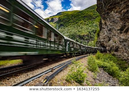 Line długo kolej żelazna turystyki norweski górskich Zdjęcia stock © cookelma