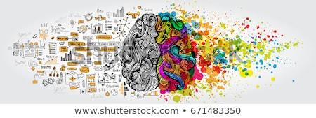 Wyobraźnia otwarta księga mózgu użytkownik pływające przestrzeni Zdjęcia stock © RAStudio
