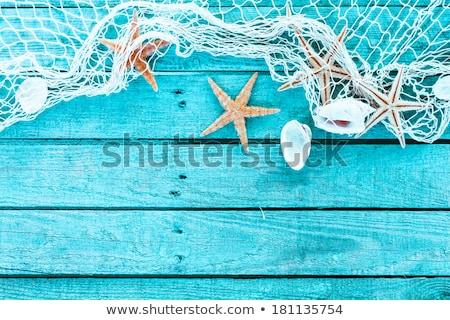 Starfish ondulado areia textura fundo Foto stock © ThreeArt