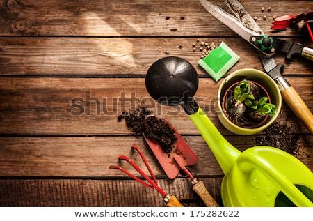oude · tuin · tools · groene · bezem · muur - stockfoto © rudyardmace
