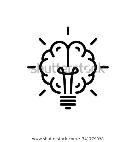 dados · informação · conhecimento · sabedoria · palavra · abstrato - foto stock © leeser