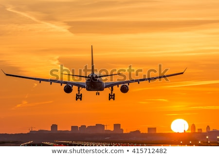 Morning flight Stock photo © moses