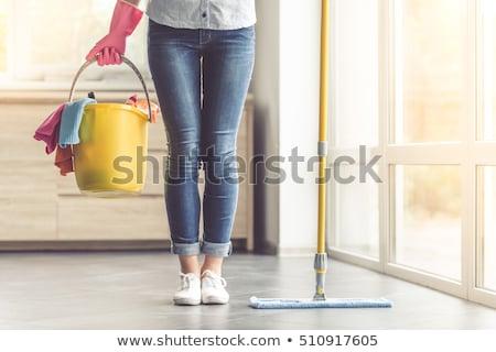 tavaszi · nagytakarítás · nő · jókedv · izolált · takarítónő · mutat - stock fotó © ariwasabi
