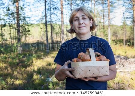 a mature woman holding a mushroom basket Stock photo © photography33