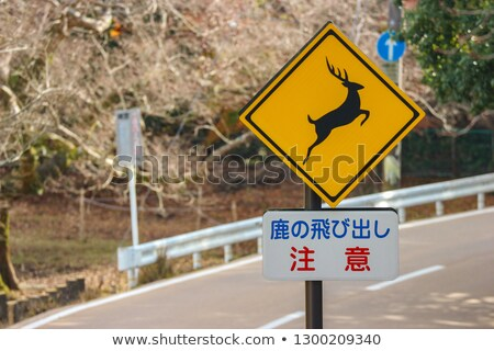 Beware the deers sign in Nara, Japan Stock photo © Arrxxx