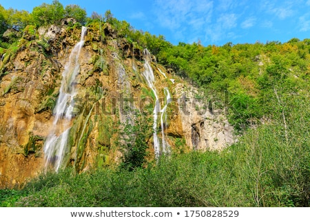 Plitvice lakes - Croatia, Balkans. UNESCO place. Stock photo © tomasz_parys