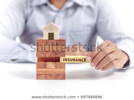 Ev sigortası kırmızı ev korumalı güvenlik siyah Stok fotoğraf © JohanH