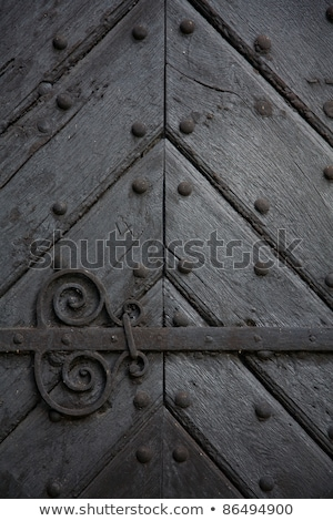 close up of a old fortress door stock photo © calvste