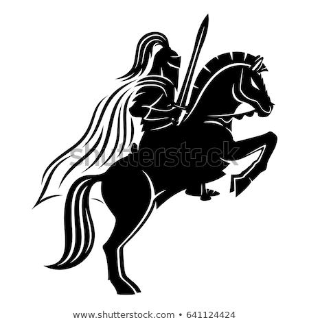 Foto stock: Cavaleiro · cavalo · engraçado · desenho · animado · vetor