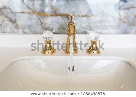 Modern washbasin Stock photo © ozaiachin