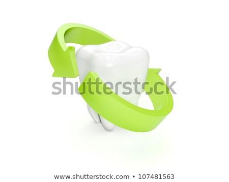 3d illustration bescherming tanden behoud groene witte Stockfoto © kolobsek