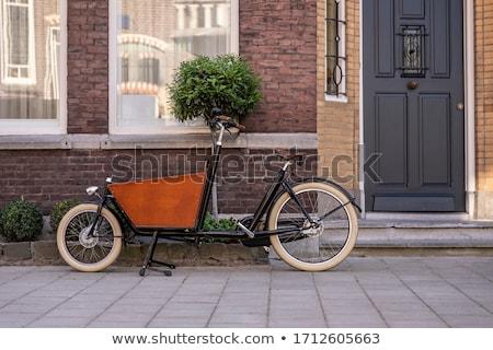 Stockfoto: Typisch · nederlands · huizen · water · zonnige · voorjaar
