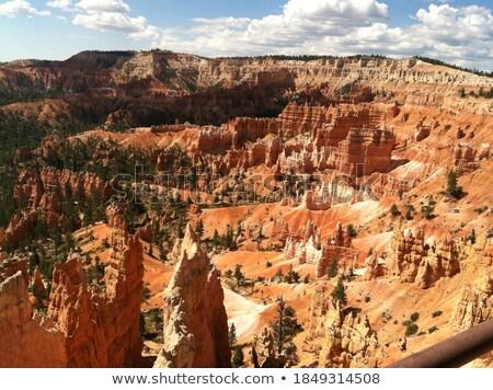 Colorido arenito floresta sombras jardim rochas Foto stock © wildnerdpix